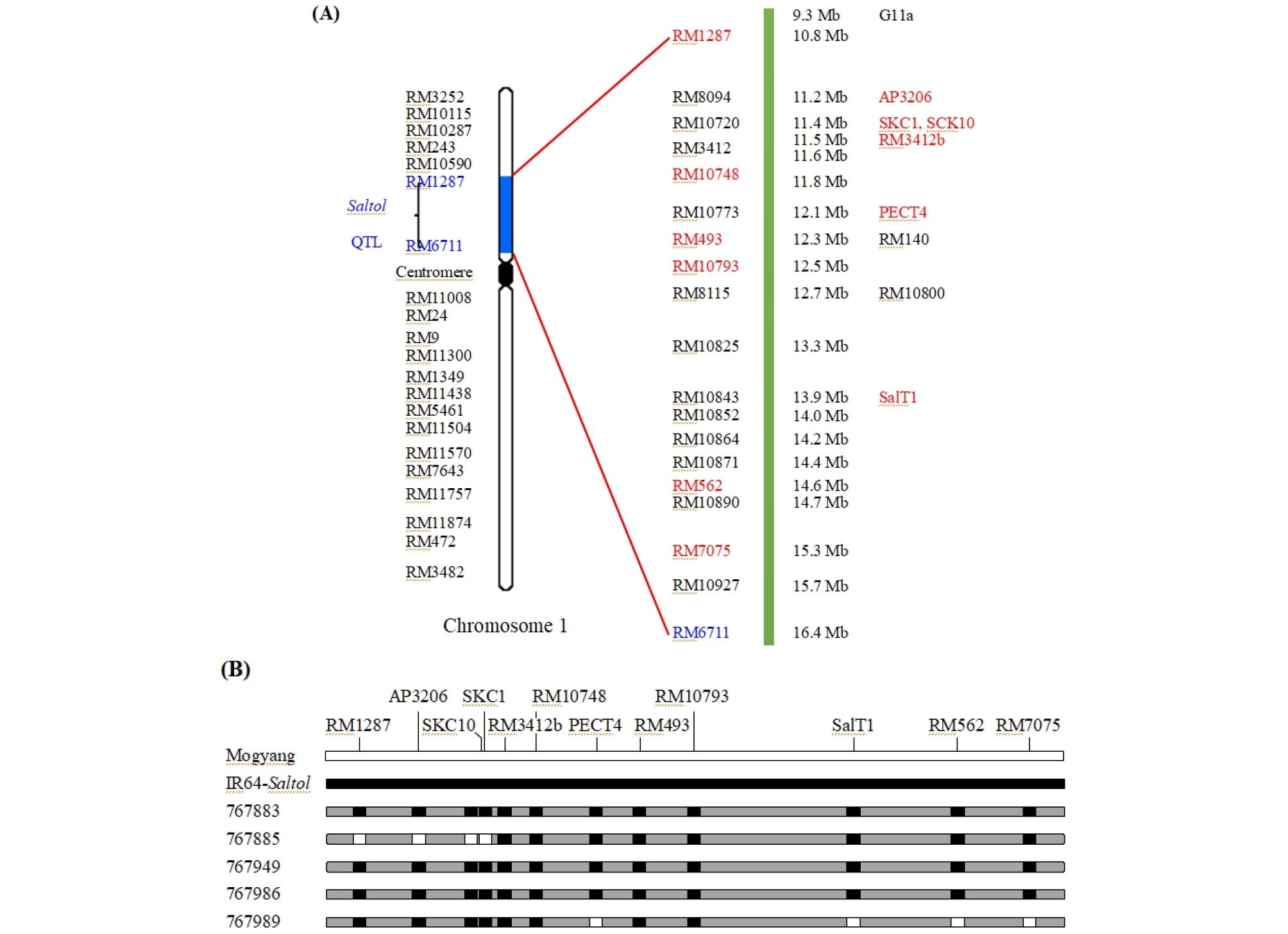 http://static.apub.kr/journalsite/sites/kjcs/2020-065-03/N0840650306/images/kjcs_65_03_06_F1.jpg