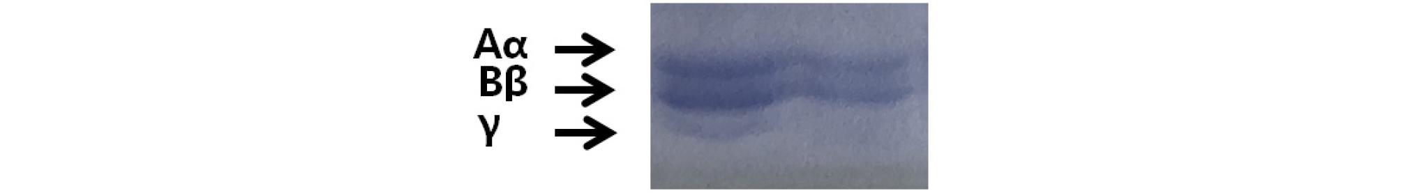 http://static.apub.kr/journalsite/sites/kjpr/2020-033-04/N0820330402/images/kjpr_33_04_02_F6.jpg