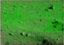 http://static.apub.kr/journalsite/sites/ksce/2020-040-04/N0110400410/images/Figure_KSCE_40_04_10_T2-13.jpg
