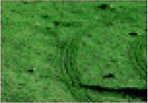 http://static.apub.kr/journalsite/sites/ksce/2020-040-04/N0110400410/images/Figure_KSCE_40_04_10_T2-17.jpg