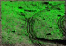 http://static.apub.kr/journalsite/sites/ksce/2020-040-04/N0110400410/images/Figure_KSCE_40_04_10_T2-19.jpg