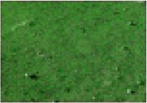 http://static.apub.kr/journalsite/sites/ksce/2020-040-04/N0110400410/images/Figure_KSCE_40_04_10_T2-2.jpg
