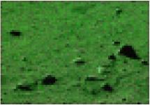 http://static.apub.kr/journalsite/sites/ksce/2020-040-04/N0110400410/images/Figure_KSCE_40_04_10_T2-7.jpg