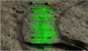 http://static.apub.kr/journalsite/sites/ksce/2020-040-04/N0110400410/images/Figure_KSCE_40_04_10_T3-17.jpg