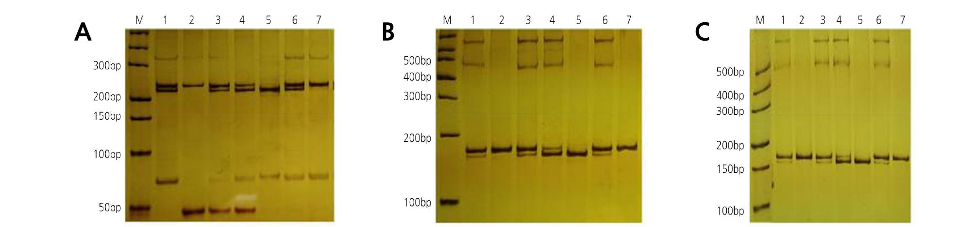 http://static.apub.kr/journalsite/sites/kshs/2020-038-01/N0130380111/images/HST_38_01_11_F8.jpg
