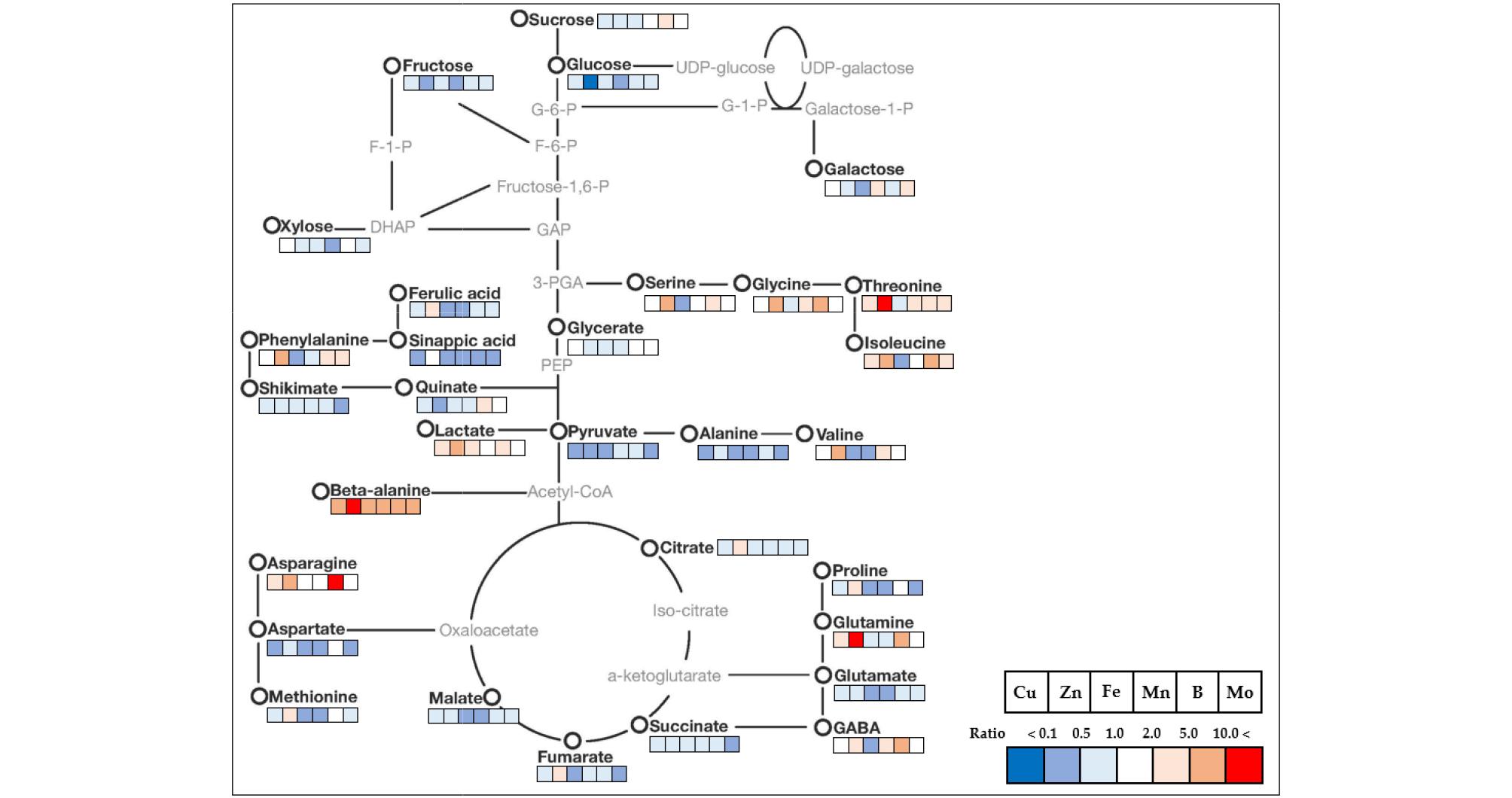http://static.apub.kr/journalsite/sites/ksssf/2020-053-03/N0230530312/images/ksssf_53_03_12_F5.jpg